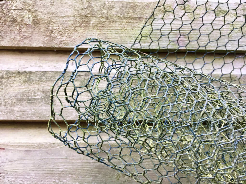 old roll of chicken wire. Cover your plant pot in this and the cat won't dig up the soil to use for urinating
